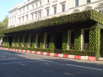 Green hoarding opposite Buckingham Palace