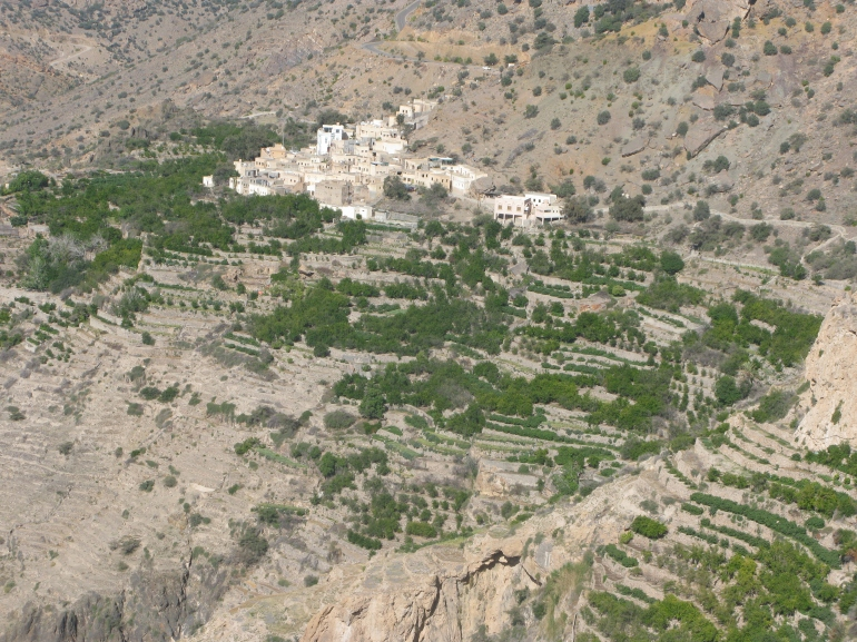 The terraces of the Jebel Al Akhdar