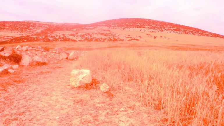 Photograph through red film of an area in the West Bank where nuclear waste is reported to beburied, from new artist publication by Inas Halabi, 2017